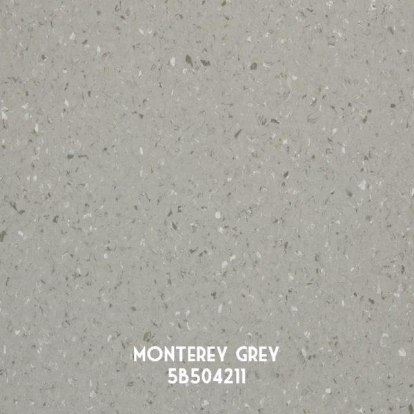 Armstrong-Quantum-MontereyGrey-5B504211