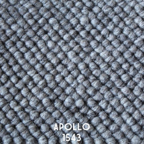Himilaya Carpet-Apollo 'Apollo 1543'