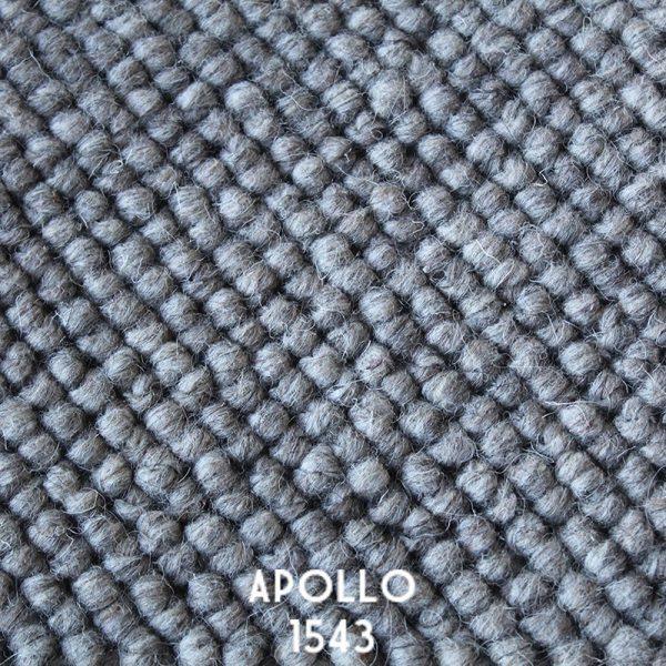 Himilaya Carpet-Apollo 'Apollo 1543'