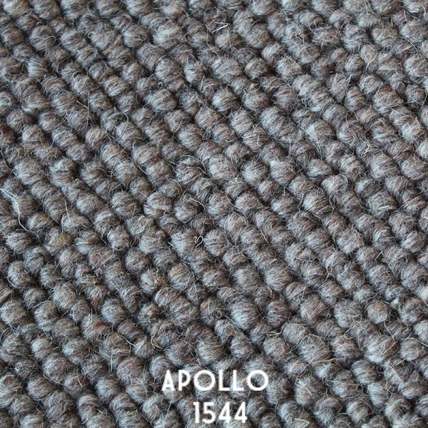 Himilaya Carpet-Apollo 'Apollo 1544'