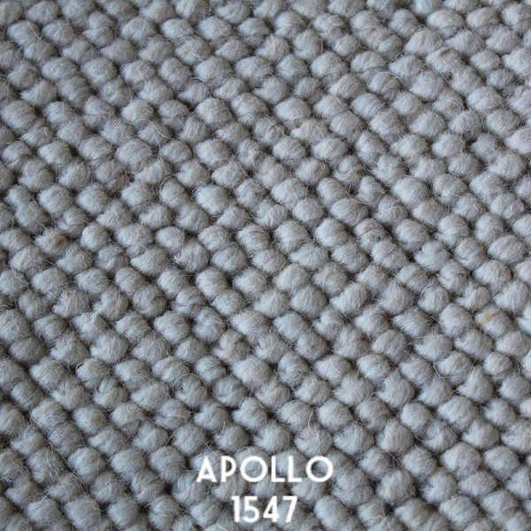 Himilaya Carpet-Apollo 'Apollo 1547'