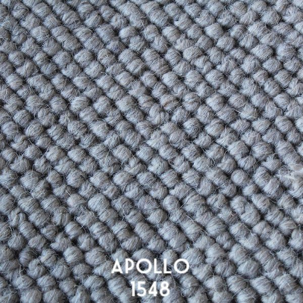 Himilaya Carpet-Apollo 'Apollo 1548'