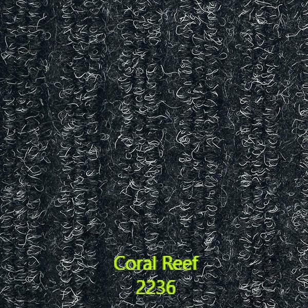 Marine-Rib-CoralReef-2236
