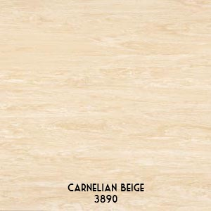 Polyflor-Bloc-Carnelian-Beige-3890